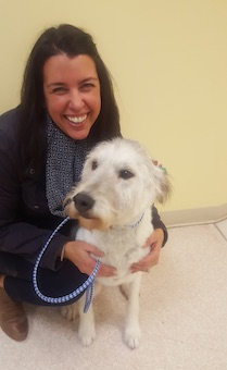 Fairhaven MA Veterinarians & Staff | Capeway Veterinary Hospital